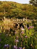 Mayurama Park Garden, Kyoto, Japan, Asia Photographic Print