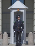 Sentry Duty at the Royal Palace, Oslo, Norway, Scandinavia, Europe Photographic Print by James Emmerson