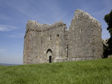 Weobley Castle, Western Face, Gower, West Glamorgan, Wales, United Kingdom, Europe Photographic Print by Julian Pottage