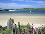 Padstow Bay, Padstow, Cornwall, England, United Kingdom, Europe Fotografisk trykk