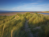 A Summer View of the Barrier Island Scolt Head Island, Norfolk, England, United Kingdom, Europe Photographic Print by Jon Gibbs