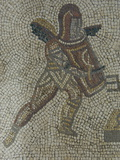 Detail of a Gladiator From Carpet Border in Mosaic Dating From 350 Ad, Roman Villa, West Sussex Photographic Print by James Emmerson