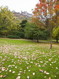 Princes Street Gardens and Edinburgh Castle, Edinburgh, Lothian, Scotland, Uk Photographic Print