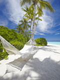 Hammock on Empty Tropical Beach, Maldives, Indian Ocean, Asia Photographic Print