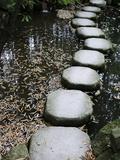 Tenjuan Wet Garden in Nanzen Ji Temple, Kyoto, Japan, Asia Photographic Print