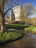 Blarney Castle in Springtime, County Cork, Munster, Republic of Ireland, Europe Photographic Print
