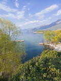 View From the Monastery of St. Naum at Lake Ohrid, UNESCO World Heritage Site, Macedonia, Europe Fotografiskt tryck av Michael Runkel