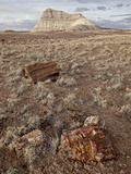 Petrified Wood and An Eroded Hill, Petrified Forest National Park, Arizona Photographic Print by James Hager