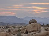 Cloudy Sunrise, Joshua Tree National Park, California, United States of America, North America Photographic Print by James Hager