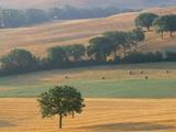 Val D'Orcia, Siena Province, Tuscany, Italy, Europe Photographic Print by Sergio Pitamitz