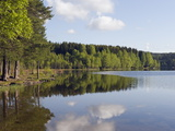 Sognsvann Lake, Oslo, Norway, Scandinavia, Europe Photographic Print by Christian Kober