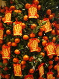 Tangerine Good Luck Symbols, Chinese New Year Decoration, Macao, China, Asia Photographic Print