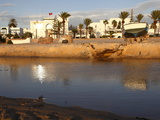 Canal and Harbour Front, Hammamet, Tunisia, North Africa, Africa Stampa fotografica di Dallas & John Heaton