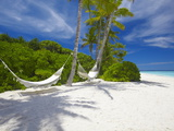 Hammock on Empty Tropical Beach, Maldives, Indian Ocean, Asia Photographic Print by Sakis Papadopoulos
