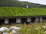 House With Green Roof, Near Tinn, Telemark, Norway, Scandinavia, Europe Photographic Print by Marco Cristofori