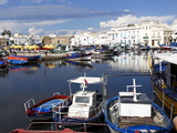 Old Port Canal and Fishing Boats, Bizerte, Tunisia, North Africa, Africa Photographic Print by Dallas & John Heaton