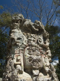 Stela D Dating From 736 Ad, Copan Archaeological Park, UNESCO World Heritage Site, Honduras Photographic Print