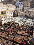Tannery, Fez, UNESCO World Heritage Site, Morocco, North Africa, Africa Fotografisk tryk af Marco Cristofori