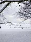 People Sledging on a Snow Covered Hill, Hampstead Heath, London, England, United Kingdom, Europe Photographic Print by Michael Kelly