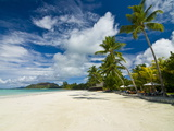 Beach Bungalows at Beach of Anse Volbert, Praslin, Seychelles, Indian Ocean, Africa Photographic Print