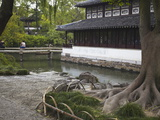 The Humble Administrator's Garden, Suzhou, Jiangsu, China, Asia Photographic Print by Ian Trower