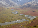 Braided River in the Fall, Denali National Park and Preserve, Alaska, USA Photographic Print by James Hager