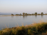 Zambezi River in the Early Morning, Manapools National Park, Zimbabwe, Africa Photographic Print