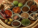Spices Used in Thai Food, Thailand, Southeast Asia, Asia Photographic Print
