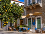 Orange Tree in a Little Village in the Lakonian Mani, Peloponnese, Greece, Europe Fotografisk tryk