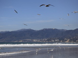 Beach, Santa Monica, Malibu Mountains, Los Angeles, California Photographic Print by Wendy Connett