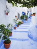 Blue Painted Steps With Flower Pots, Chefchaouen, Morocco, North Africa, Africa Photographic Print by Guy Edwardes