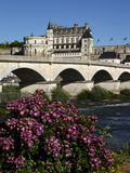 Chateau D'Amboise on the River Loire, Indre-Et-Loire, Loire Valley, France Photographic Print by Dallas & John Heaton