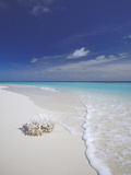 Corals on White Sandy Beach, Maldives, Indian Ocean, Asia Photographic Print