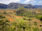Agriculture in the Dramatic Valle De Vinales, Pinar Del Rio Province, Cuba Photographic Print by Martin Child