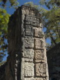 Mayan Glyphs on the Side of Stela, Copan Archaeological Park, UNESCO World Heritage Site, Honduras Photographic Print