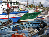 Fishing Boats, Kelibia Harbour, Tunisia, North Africa, Africa Stampa fotografica di Dallas & John Heaton