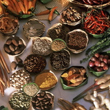 Spices Used in Thai, Indian, Indonesian and Malay Food, Thailand, Southeast Asia, Asia Photographic Print