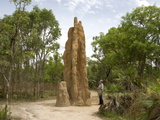 Castle Termite Hill, Litchfield National Park, Northern Territory, Australia, Pacific Photographic Print
