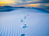 White Sands National Monument, New Mexico, USA Photographic Print