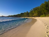 Beach Anse Cocos, La Digue, Seychelles, Indian Ocean, Africa Photographic Print