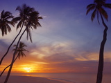 Palm Trees and Ocean at Sunset, Maldives, Indian Ocean, Asia&No.10; Photographic Print by Sakis Papadopoulos