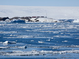 Research Station, Dumont D'Urville, Ile Des Petrels, Antarctica, Polar Regions Photographic Print by Thorsten Milse