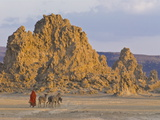 Local Afar Woman With Her Donkeys on Her Way Home, Lac Abbe, Republic of Djibouti, Africa Fotografisk tryk
