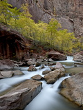 Cascades on the Virgin River in the Fall, Zion National Park, Utah, USA Photographic Print