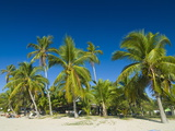 The Beautiful Beach of Andilana, Nosy Be, Madagascar, Indian Ocean, Africa Photographic Print