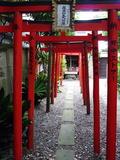 Torii Shrine Gates, Kyoto, Japan, Asia Photographic Print