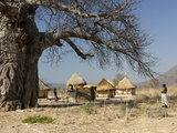 Traditional Settlement and Large Baobab Tree Near Lake Kariba, Zimbabwe, Africa Fotografisk tryk