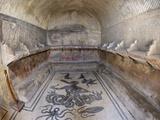 Floor of Tepidarium in Roman Central Baths Mosaic Depicting Triton, Campania, Italy Photographic Print