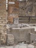 Roman Drinking Fountain on Via Stabiana, Pompeii, Campania, Italy, Europe Photographic Print