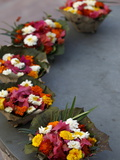 Diyas (Floral Floats) For Sale on Rishikesh Ghats, Rishikesh, Uttarakhand, India, Asia Photographic Print